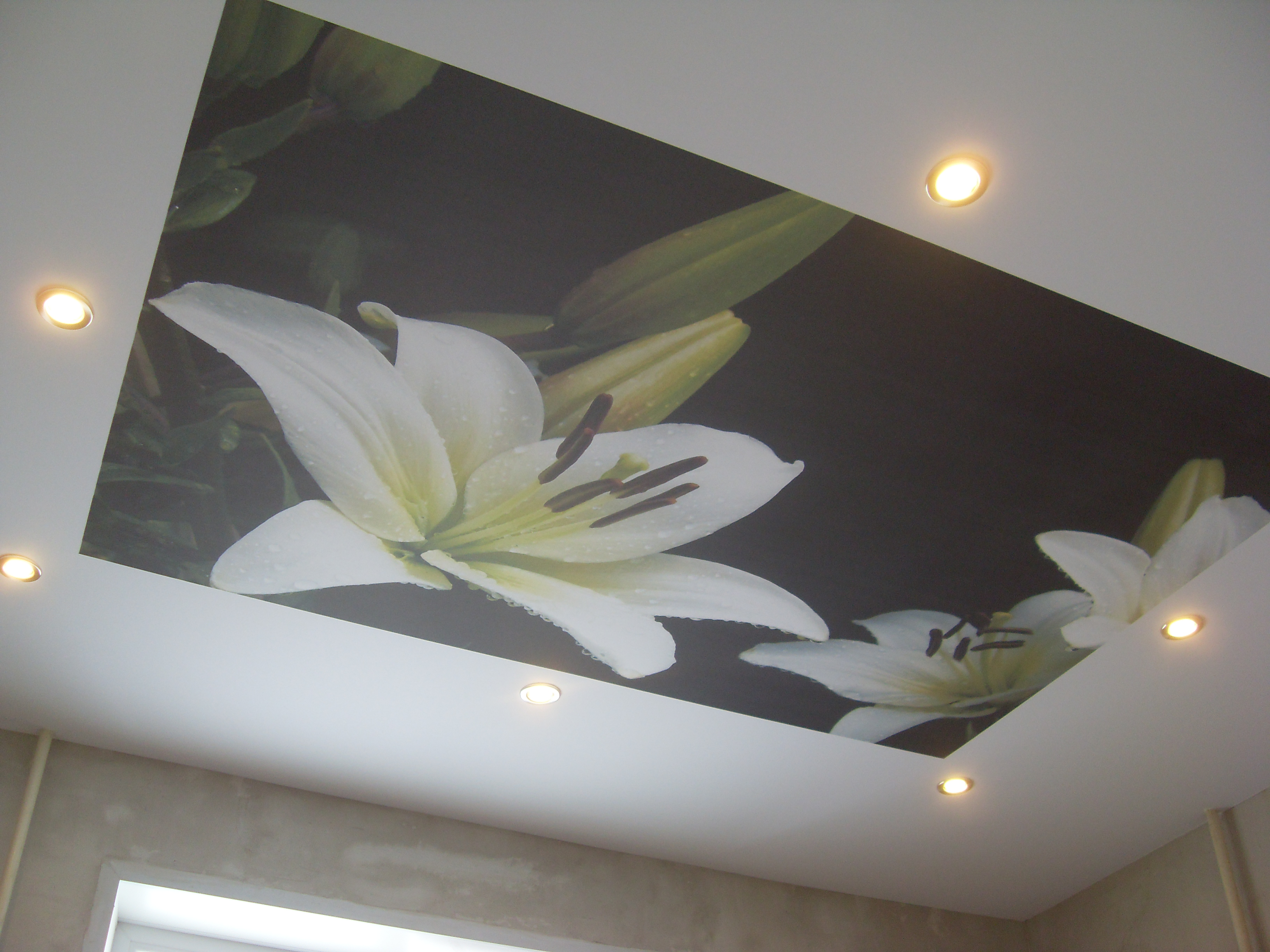 натяжные потолки фото цены установка натяжных потолков отзывы купить видео двухуровневые с установкой светильники + для монтаж натянуть Йошкар-Ола